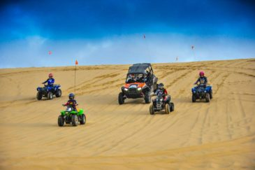 Family riding ATVs downhill in Oregon Dunes